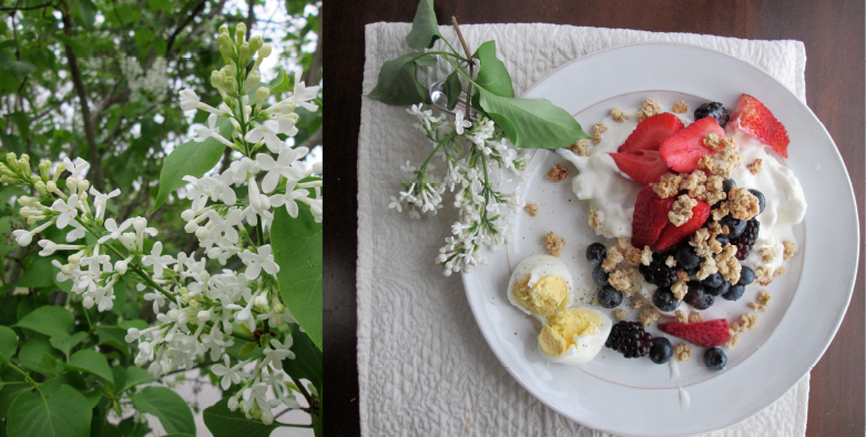 Lilac Woods Breakfast, recipes and photography by amormilagre.com