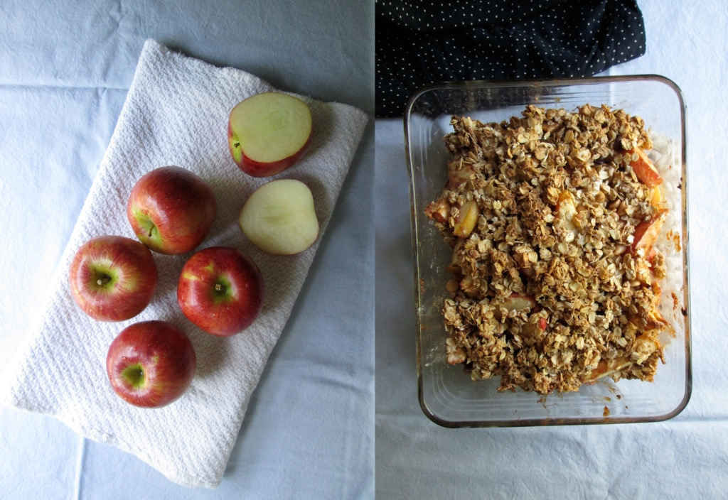 Apple Crisp Recipe and Photography by amormilagre.com