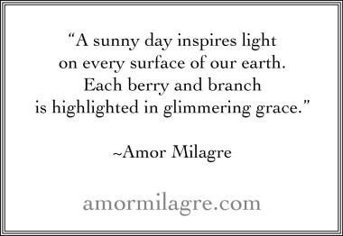 Quotes by amormilagre.com
