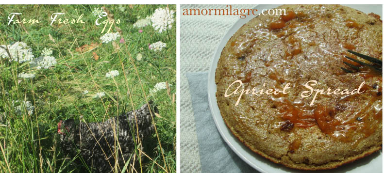Cornbread Pancakes Recipe and Photography by amormilagre.com Organic, Paleo, Healthy. Artwork, Stationery, Organic Apparel, and Custom Gifts.