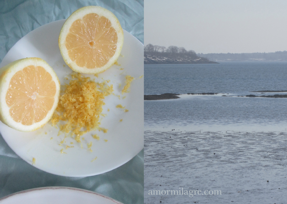 Lemons in the Sea Recipe and Photography by amormilagre.com Organic Recipes, Paleo, Healthy. Artwork, Stationery, Organic Apparel, and Custom Gifts. Coconut Lemon Shrimp Gulf of Maine, Wild Caught, Lemon Butter Seared Scallops, Baby Snack Lemon Cheese Cauliflower. Ocean, Sea, Winslow Memorial Park, Freeport, Maine 04032. Customized Stationery, leopard, french, recycled paper, natural, greeting cards, writing paper, mermaid watercolor original painting for sale. Large scale artwork. Nude female figure drawing. Spring time thaw. Beach sand.