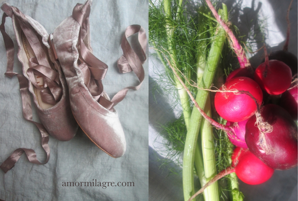 Radish Ballet Recipe and Photography by amormilagre.com Organic Recipes, Paleo, Healthy. Artwork, Stationery, Organic Apparel, and Custom Gifts. Sports, Dance, self love, saying no to bullies, Ballet shoes, velvet flat shoes, spring summer dresses, ballet wrap dress, Interior Design House design home building tips, green home design, cork flooring, mini split ac heat, hvac system, radiant heating. Storage. Gentle movement activites. Positive thinking. health and wellness. Tai chi, swimming, water is healing. Turmeric radish cornbread cornmeal pancakes, fennel swiss chard soup, baby and parent meals. yoga grounding exercise. tree of life.