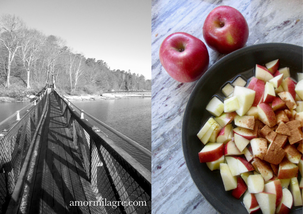 Steamed Apples & Sauce Sea Explorer Maine Recipe and Photography by amormilagre.com Organic, Vegan, Vegetarian, Plant-based, Healthy. Artwork, Stationery, Organic Apparel, and Custom Gifts. baby-and-me meals snacks, beach, ocean, seascape, Maine bridges
