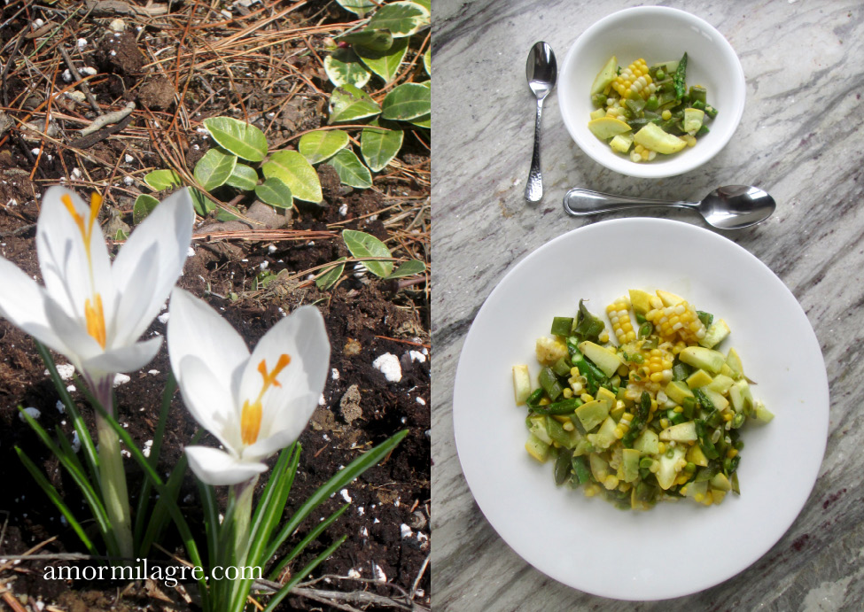 Spring Fling Salad Recipe and Photography by amormilagre.com Organic, Vegan Vegetarian, Plant-based, Healthy. Artwork, Stationery, Organic Apparel, and Custom Gifts. Snap Peas, Corn on the Cob, asparagus, yellow squash, perennial spring bulb flowers. baby and me meals, snacks, veggie salad
